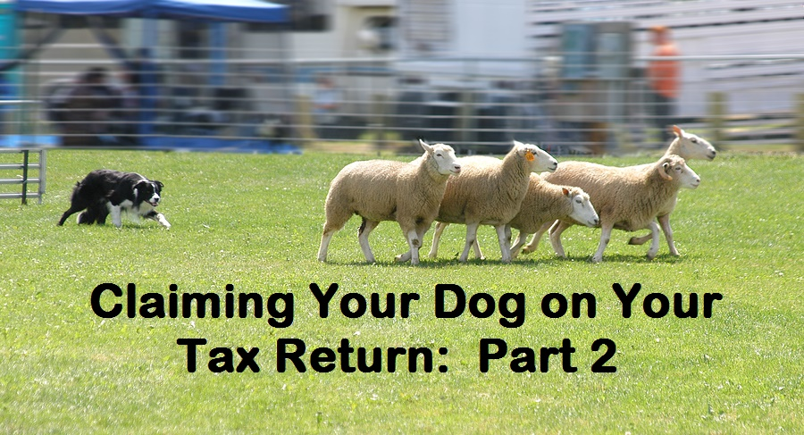 A working dog may be claimed as a business expense if the dog truly works on your business.