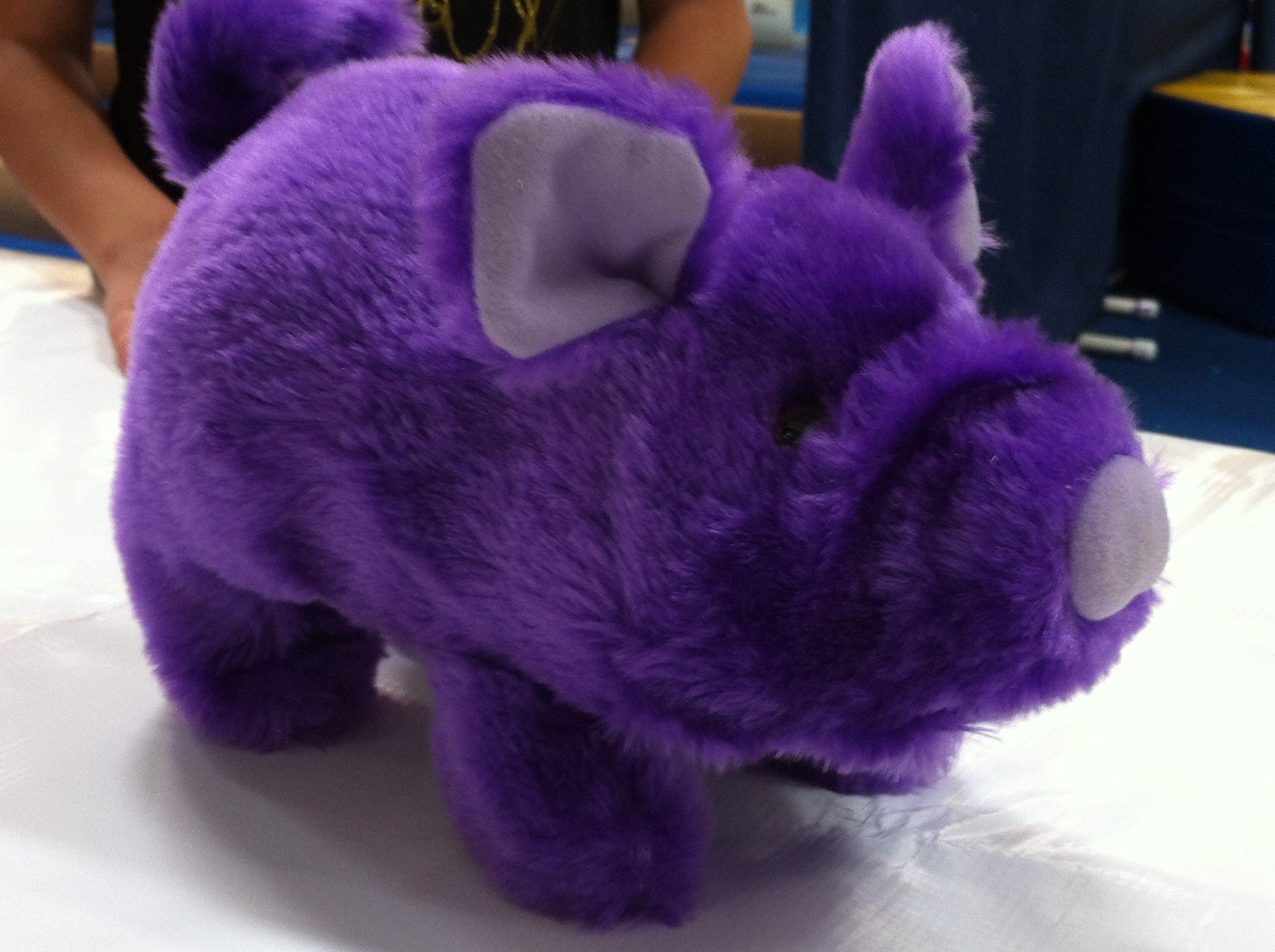 Purple-Pig