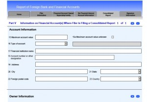 consolidated fbar account report